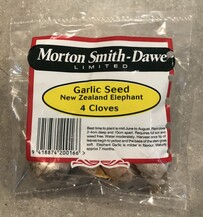 Garlic Seed New Zealand Elephant 4 cloves