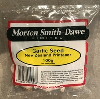 Garlic Seed New Zealand Printanor 100g